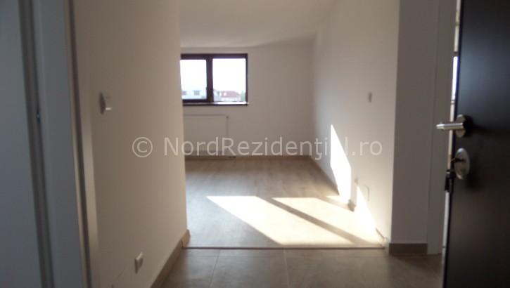 apartament 2 camere de vanzare bucurestii noi (18)